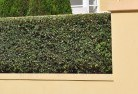 Essington Hard landscaping surfaces 8